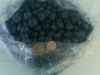1-gallon-bag-of-fresh-picked-blueberries-with-nickel-quarter
