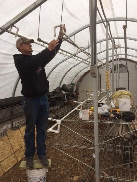 Ethan irrigating